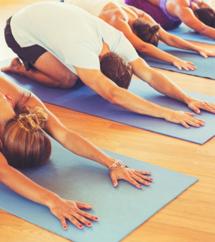 Row of people at pilates on their mat